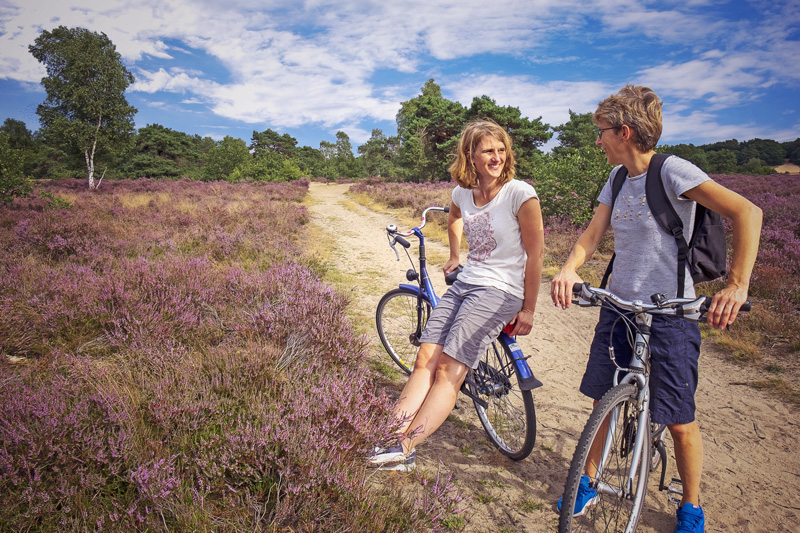 Veluwe Lodges fietsers op de Veluwe